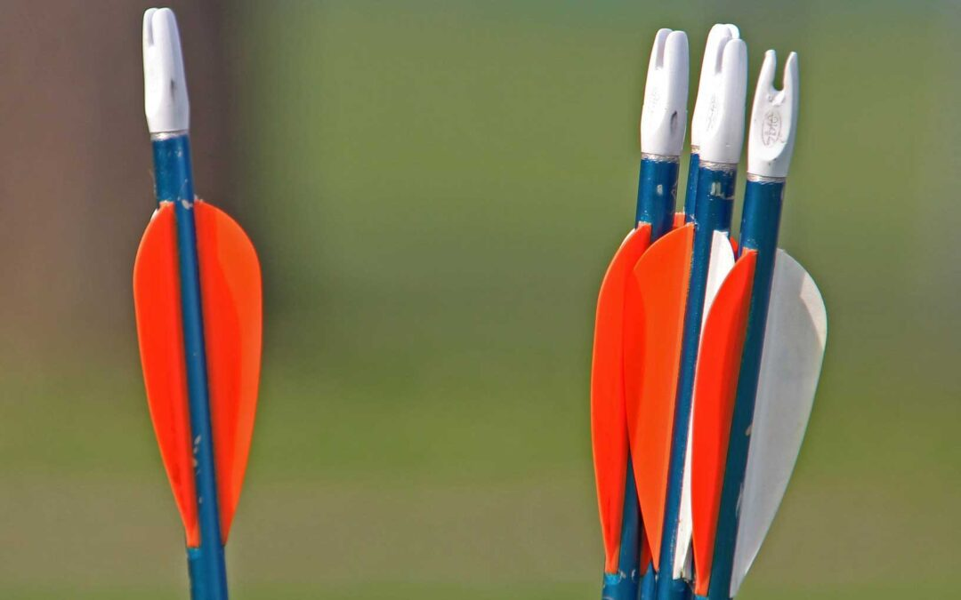 Arrow Spine Chart: How to Find Your Arrow Spine